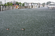 "Annapolis, Maryland - June 05, 2016: A pedestrian crosses Compromise Street in Annapolis, Md. during a brief, dramatic afternoon thunderstorm Sunday June 5th, 2016. Earlier that day a perigean spring tide brought some of the highest water levels of the year to the coastal city and partially flooded the park. Such tides are prone to cause nuisance flooding. Although thunderstorms are a more common nuisance flooding culprit.<br /> <br /> A perigean spring tide brings nuisance flooding to Annapolis, Md. These phenomena -- colloquially know as a ""King Tides"" -- happen three to four times a year and create the highest tides for coastal areas, except when storms aren't a factor. Annapolis is extremely susceptible to nuisance flooding anyway, but the amount of nuisance flooding has skyrocketed in the last ten years. Scientists point to climate change for this uptick. <br /> <br /> <br /> CREDIT: Matt Roth for The New York Times<br /> Assignment ID: 30191272A"