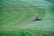 Tractor mower cutting a large field of grass.