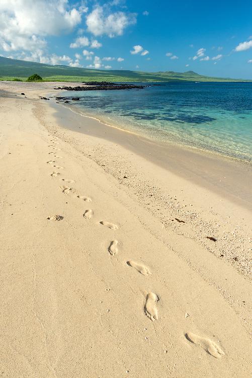 Footprints on a beach on San Cristobal Island, Galapagos Islands, Ecuador.