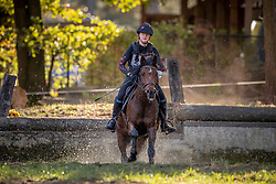 Van De Peer Renee, BEL, Magic Starlight Tir<br /> LRV Ponie cross - Zoersel 2018<br /> © Hippo Foto - Dirk Caremans<br /> 28/10/2018