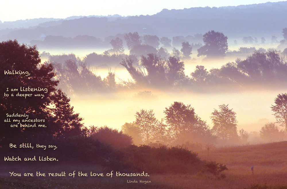 """Early morning overlooking a bank of fog in the lowlands; w/quote: """"Walking, I am listening to a deeper way. Suddenly all my ancestors are behind me. Be still, they say, watch and listen. You are the result of the love of thousands."""" By Linda Hogan"""