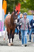 Laurence Roos - Fil Rouge<br /> FEI European Championships Gothenburg 2017<br /> © DigiShots