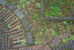 tuin, bestrating, Vollenhove, Steenwijkerland, Overijssel, Netherlands