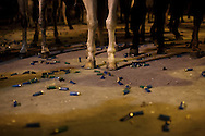"Dozens of blank cartridges lay on the ground next to the horses during the ""La Encamisa"" Festival on December 7,  2014 in Torrejoncillo, Extremadura region, Spain. ""La Encamisa"" is an ancient festival in honor of Immaculate Conception. Hundreds of horsemen wearing a white sheet gather outside the church in the main square. The procession starts when a banner with the image of Immaculate Conception is delivered to the horse rider steward 'Paladin' and people cheer and shoot blanks. There are bonfires along the way where people gather to chat, eat traditional sweets and drink local wine. The origin of this tradition is unknown but it is believed the festival comes from a military event in which people from Torrejoncillo were involved. The war in Flanders in 1585, the Battle of Pavia or a legend of the siege suffered by city of Coria. (© Pablo Blazquez)"