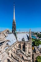notre dame de paris and the seine river France in the city of Paris in france