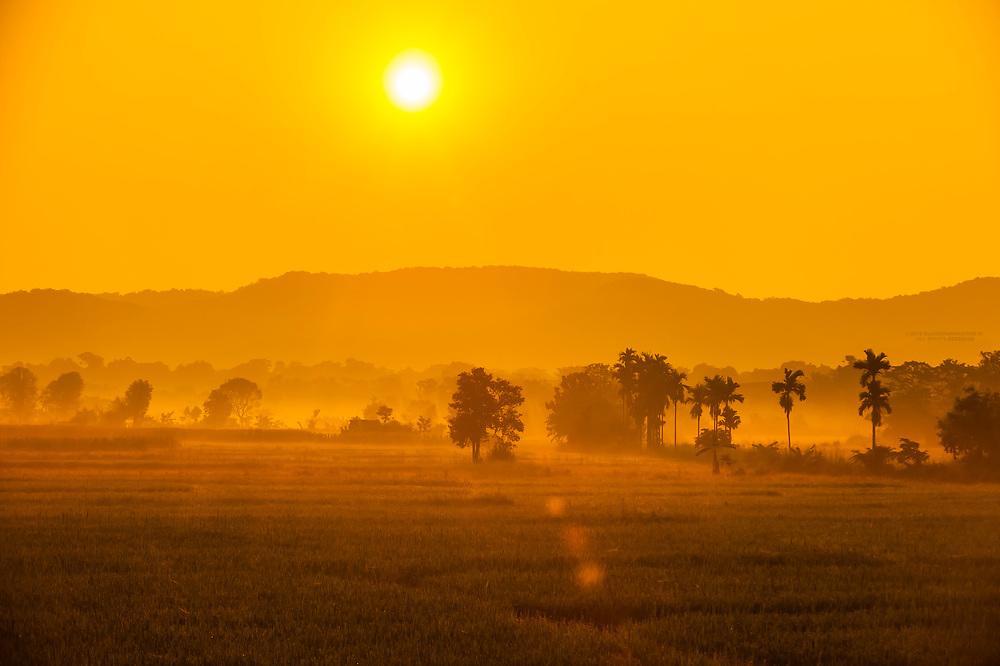 Landscape at sunrise near Kekirawa, Sri Lanka.