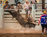 Mini Bull Riding