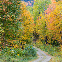 A dirt road in fall in Wentworths Location, New Hampshire. Northern Forest.