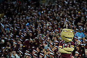 June 15th 2011: QLD Mascot during game 2 of the 2011 State of Origin series at ANZ Stadium in Sydney, NSW, Australia on June 15, 2011. Photo by Matt Roberts/mattrIMAGES.com.au / QRL