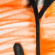 The orange and black work well together in this composition.  I like the uneven fill of the orange.  I can tell that the painter at first wanted to have a solid orange but changed his (probably but maybe her) mind and change to the sloppier, less even fill.  It makes me wonder why the change - Was he running low on paint?  Was he afraid of being arrested?