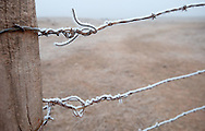 Frost clings to a barbed wire fence in North Dakota.