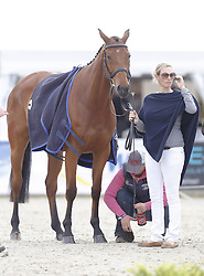 59839682<br /> Zara Phillips, daughter of Princess Anne and Granddaughter of the British Queen at Luhmühlen, before the Jump in Look, Salzhausen in Germany, June 16, 2013. UK ONLY
