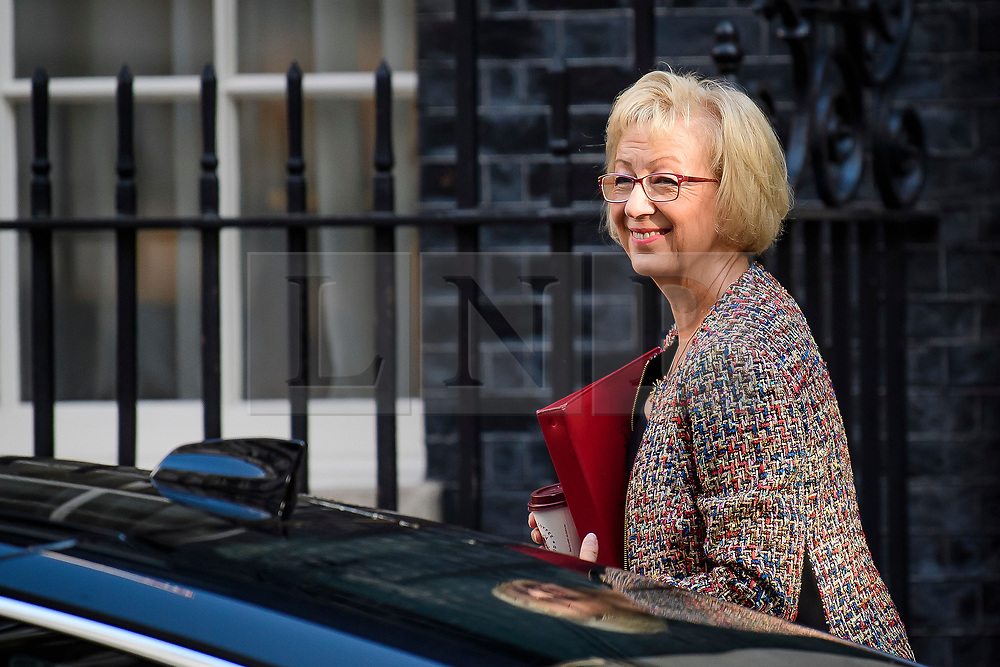 © Licensed to London News Pictures. 12/09/2017. London, UK. Minister of State at the Department of Energy and Climate Change ANDREA LEADSOM arrives at 10 Downing Street in London ahead of a cabinet meeting.  In the early hours of this morning government won a vote in Commons passing the EU repeal bill, by a margin of 326 to 290 votes. Photo credit: Ben Cawthra/LNP