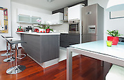 Modern interior of open-plan kitchen and living room