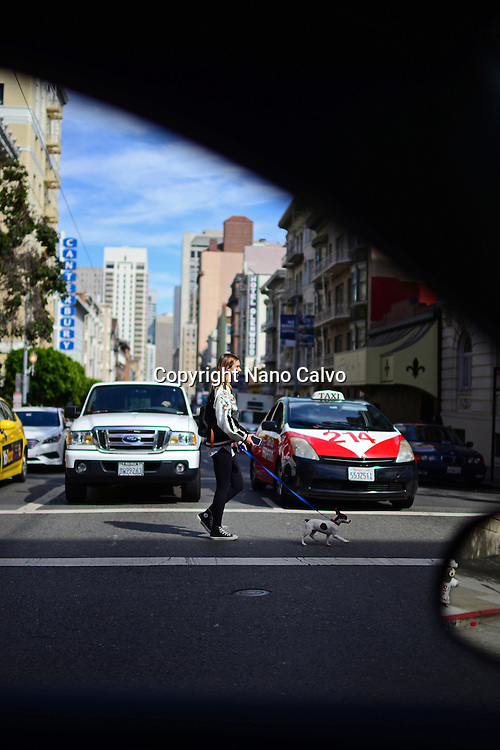Young woman in crosswalk with her dog, viewed from inside the car.
