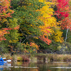 Two women kayaking on Pennesseewassee Lake in Norway, Maine. Fall foliage.
