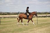 Class 25 - Ridden Horse
