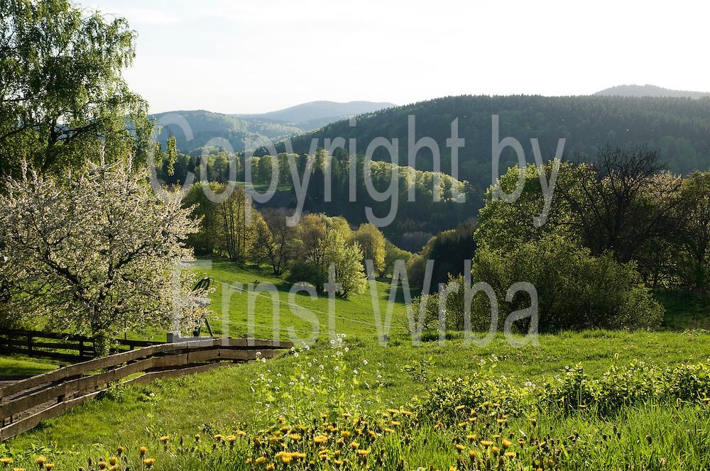 Blick ins Tal, Frühling, Landschaft, Hohegeiß, Harz, Niedersachsen, Deutschland   valley in spring, landscape, Hohegeiß, Harz, Lower Saxony, Germany