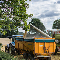 Claas Combine Harvester working on a farm during harvest in Suffolk England