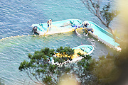 EXCLUSIVE <br /> Caught on Camera how Japans Dolphin killers capture these loving animals,Striped Dolphin's corned and captured for Slaughter <br /> <br /> Japan,  9 of the ruthless hunting vessles found a very large pod of striped dolphins.  After putting up a very long fight, with many family members escaping, the unfortunaterest of the pod was fatigued and unable to continue the fight and sadly the murderers of Taiji were able to slaughter between 34-36 striped dolphins.<br /> This was the 21st drive/slaughter of 2016 and the 40th for the entire season.<br /> <br /> Photo shows: The nets are now dropped and the family trapped.<br /> ©Sea Shepard/Exclusivepix Media