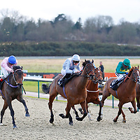 Dali's Lover and J Quinn winning the 3.10 race
