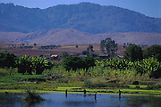 Fianarantsua's central highlands.