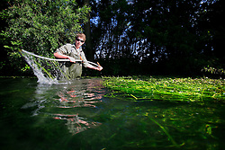 UK ENGLAND WILTSHIRE 26JUN08 - Junior river keeper Rob Hounslow cuts weeds in the riverbed of the Kennet near Stichcoombe in rural Wiltshire, western England...jre/Photo by Jiri Rezac / WWF UK..© Jiri Rezac 2008..Contact: +44 (0) 7050 110 417.Mobile:  +44 (0) 7801 337 683.Office:  +44 (0) 20 8968 9635..Email:   jiri@jirirezac.com.Web:     www.jirirezac.com..© All images Jiri Rezac 2008 - All rights reserved.