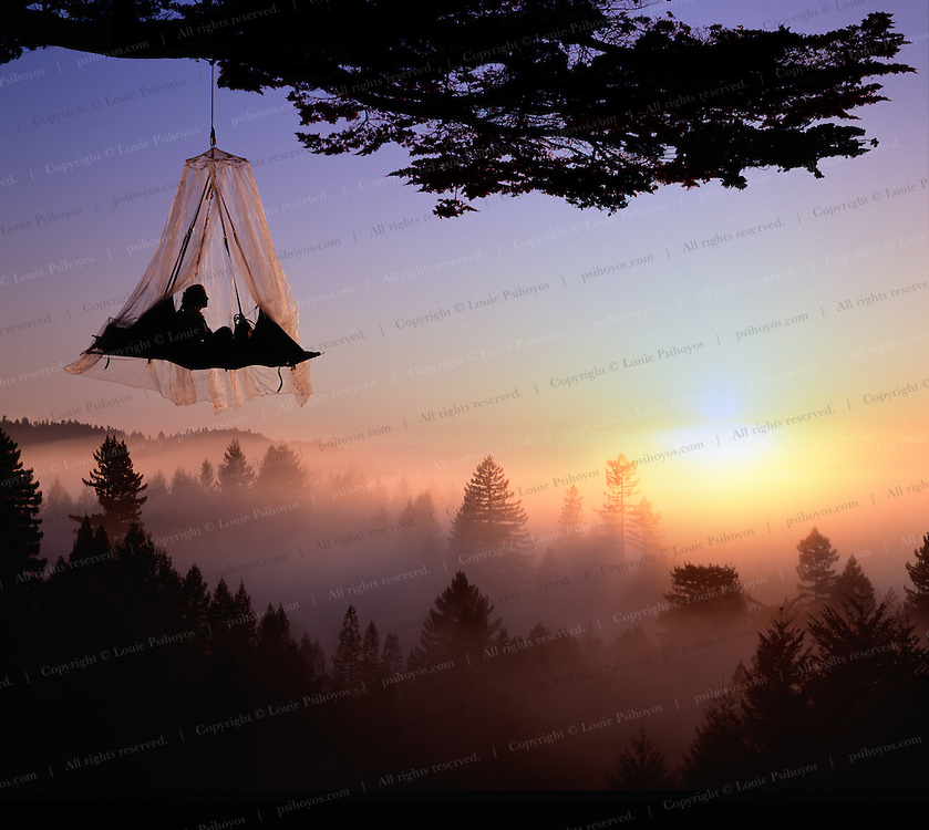Connie Taylor finds solitude in the treetops near the California coast near Elk.
