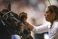 590 - Galliano<br /> KWPN Stallion Selection - 's Hertogenbosch 2014<br /> © Dirk Caremans