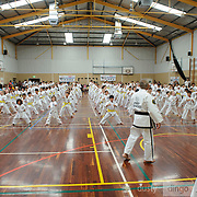 White Belts and Yellow Tips