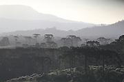 Urubici_SC, Brasil.<br /> <br /> Serra Catarinense em Urubici, Santa Catarina.<br /> <br /> Mountains in Urubici, Santa Catarina.<br />  <br /> Foto: JOAO MARCOS ROSA / NITRO