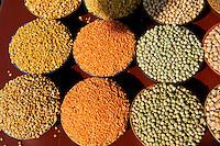 Inde, Etat du Kerala, Calicut ou kozhikode, marche aux epices, lentilles divers // India, Kerala state, Calicut or kozhikode, market, dried lentils, peas or beans