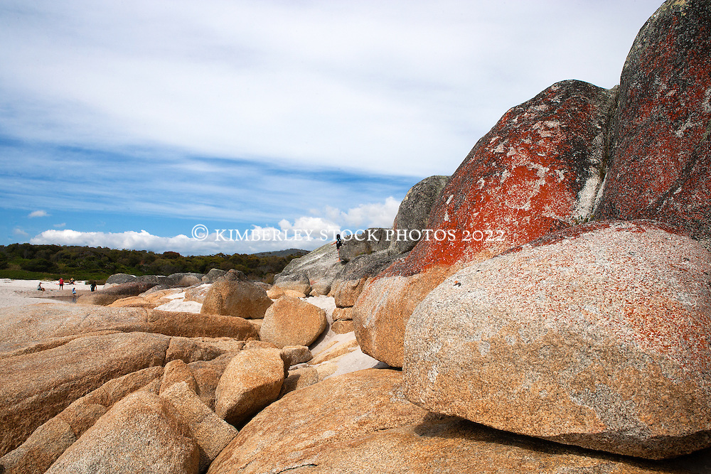 The dramatic lichen covered rocks at the end Swimcart Beach in Tasmania's Bay of Fires.