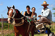 Horse and cart near San Luis, Pinar del Rio, Cuba.
