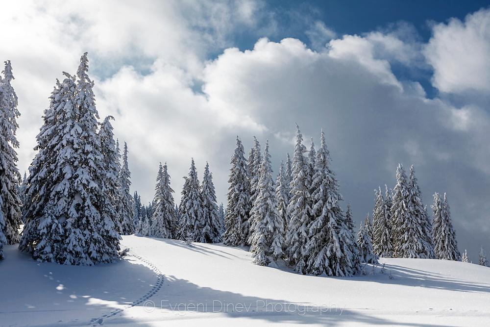 Pamporovo ski slopes