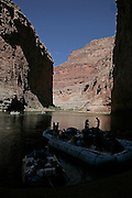 The Grand Canyon, Arizona.Rafting, Colorado River, The Grand Canyon, Arizona.