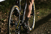 A rider competes in the Elite Men's race at the Ellison Park Cyclocross Festival in Rochester on Saturday, October 11, 2014.