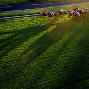The late afternoon light cast shadows during night horse racing at Canterbury race course, Sydney, Australia,  02 December 2009. Photo Tim Clayton
