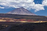 VOLCAN PAYUN LISO (3.833 m.s.n.m.) Y CERROS PINTURA, CAMINO EN EL SUELO MULTICOLOR DE PIEDRAS VOLCANICAS Y ESTEPA DE COIRONES (Festuca gracillima - fam. poaceas), RESERVA PROVINCIAL LA PAYUNIA (PAYUN, PAYEN), MALARGUE, PROVINCIA DE MENDOZA, ARGENTINA (PHOTO © MARCO GUOLI - ALL RIGHTS RESERVED)