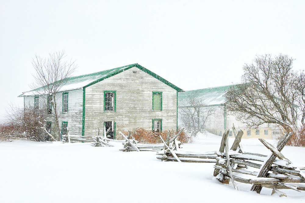 A weathered barn and outbuilding under  a silent heavy snowfall, alone in the whiteness with their split rail fence and bare trees.