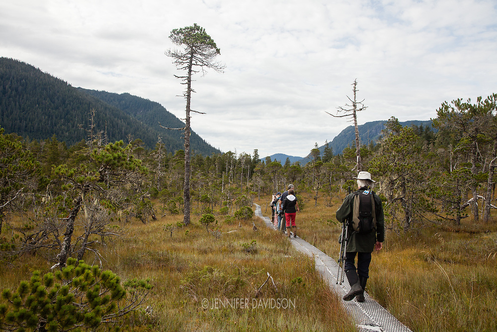 Guests from the National Geographic Sea Lion photograph during a hike through a muskeg, also called a bog, near Petersburg, Alaska.