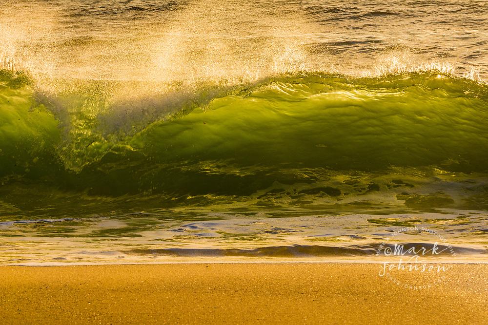 Wave breaking in the shorebreak of Shelly Beach, Caloundra, Sunshine Coast, Queensland, Australia
