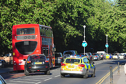 &copy; Licensed to London News Pictures. 23/07/2018<br /> WOOLWICH, UK.<br /> Traffic chaos on Shooters Hill Road.<br /> Woolwich Common fire, Woolwich. Firefighters fighting the fire this evening.<br /> Photo credit: Grant Falvey/LNP