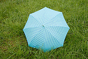 umbrella in grass field