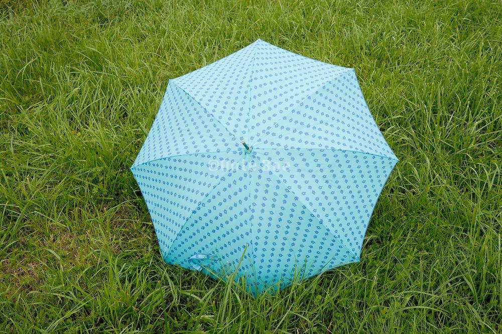 umbrella in grass field