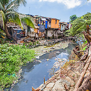 CAPTION: Waste is a big problem in these waterways. It clogs them up, worsening the impact of flooding. The land across the river falls under the jurisdiction of Pasig City Government, which has a less effective approach to waste management. Although Makati's city authorities frequently clean the river, it is quickly filled with waste from Pasig and other cities in the river's catchment area. One of the key objectives of ACCCRN is to promote cooperation and coordination between different local government units. ICLEI hopes that if Pasig joins ACCCRN, it will be able to work together with Makati to develop an integrated plan for waste management. LOCATION: Materials Recovery Facility and Urban Garden, East Rembo Barangay, Makati City, Metro Manila, Philippines. INDIVIDUAL(S) PHOTOGRAPHED: N/A.