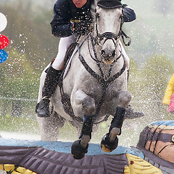 DHCHT13 - CIC*** and Advanced