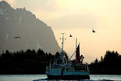 NORWAY LOFOTEN HENNINGSVAER 28MAR07 - Fishing boat leaving the port of Henningsvaer on the Lofoten islands...jre/Photo by Jiri Rezac..© Jiri Rezac 2007..Contact: +44 (0) 7050 110 417.Mobile:  +44 (0) 7801 337 683.Office:  +44 (0) 20 8968 9635..Email:   jiri@jirirezac.com.Web:    www.jirirezac.com..© All images Jiri Rezac 2007 - All rights reserved.