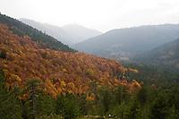 Greece, Pindos Mountains, Pindos NP, Valia Calda Landscape,