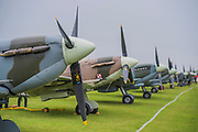 A line of Supermarine Spitfires waits on teh stand before flying together later - Duxford Battle of Britain Air Show taking place during IWM (Imperial War Museum) Duxford's centenary year. Duxford's principle role as a Second World War fighter station is celebrated at the Battle of Britain Air Show by more than 40 historic aircraft taking to the skies.